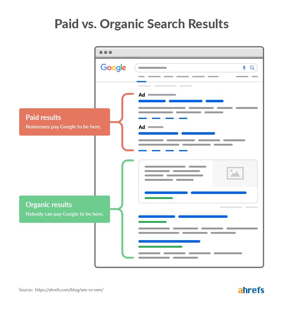 Hvad er SEO? Organisk vs betalte søgeord.